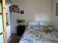 Lovely, small single room to rent ( No deposit)