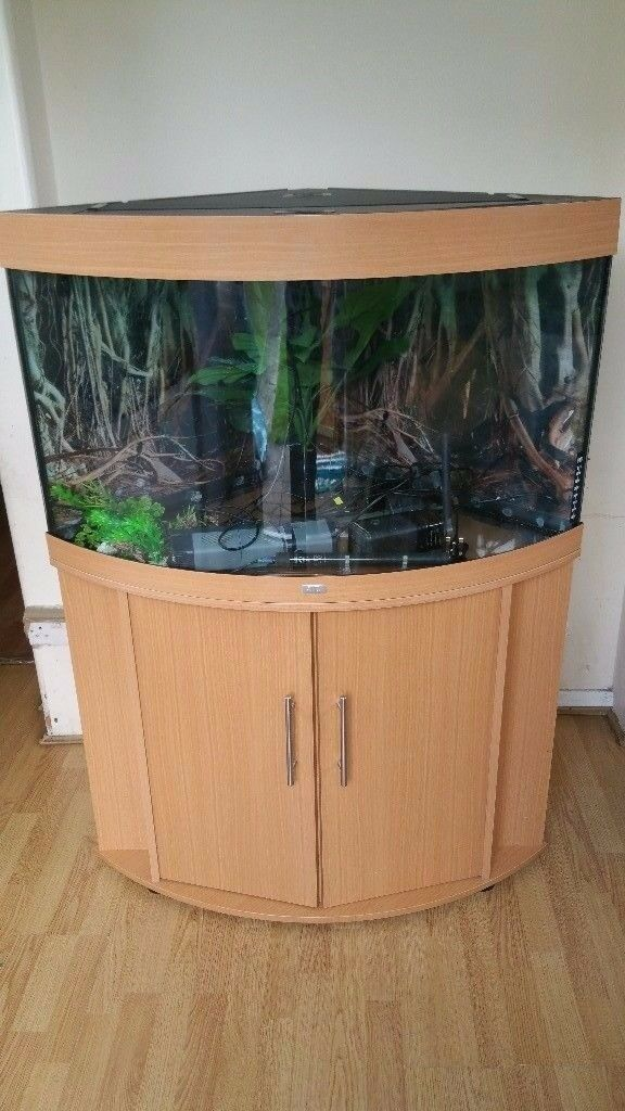 Juwel trigon 190 litre fish tank and stand full setup for Corner fish tank for sale