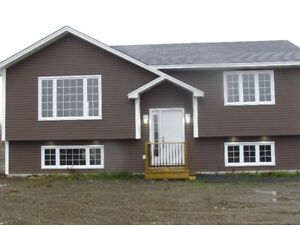 Wow!A effectively new home! 35 mins to city and no property tax!