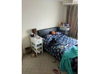 1 Single room and 1 Double room for rent in 3 bed shared house - Staplehill Bristol