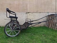 Two wheel horse drawn carriage