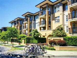 Steps away from UBC Campus! Spacious 2 Bedroom Apartment in UBC