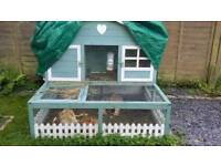 Guinea pigs x 2 with 2 story house and accessories