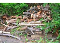 Large Pile of Logs for Wood-Burner or Barbecue