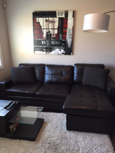 Furnished One Bedroom Available Immediately