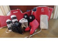 Martial Arts Protective Gear for sale. £40
