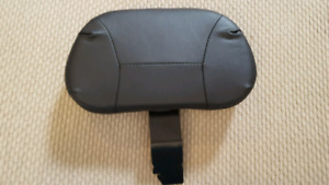 Harley-Davidson adjustable rider backrest.