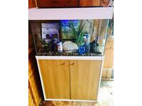 Fluval 95 Fish Tank Aquarium Full Tropical Set Up