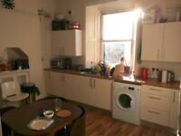 Cosy Room in Newington Postgraduate Flatshare