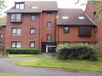 Large One Bedroom Flat With Parking - Fishponds