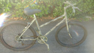 RALEIGH 18 SPEED