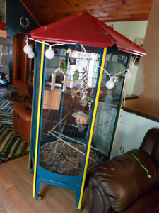 Birds and cage reduced