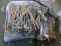 Camping Pegs x 100+