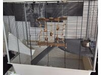 Rat Cage, Accessories, Food & Bedding