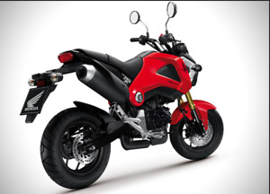 For Sale 2014 Honda Grom 125