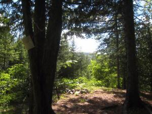 Terrain à vendre Chertsey 106900pc ruisseau