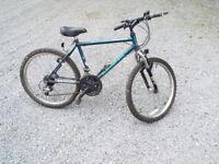 Raleigh Activator Boy's Mountain Bike