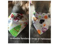 Reversible small dog bandana Xmas & Halloween