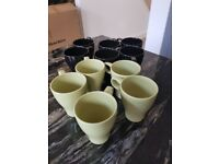 11 green and black cups