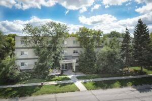 30 Donwood, Bachelor Apartment, available Immediately