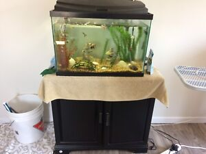 Fish tank and stand 36 gallon  (fish gone)