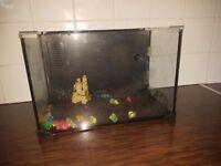 Breeding fish tank for sale