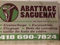 Abattage Saguenay