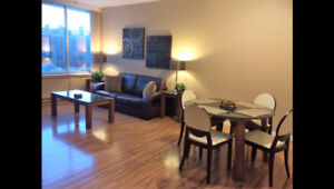Fully Furnished 2 Bedroom Condo - Downtown Regina