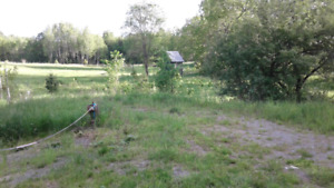 1.2  acre  lot cleaned up cabin paved beaver creek road