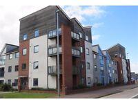 DOUBLE ROOM - Apartment Share (Broughton, Milton Keynes)