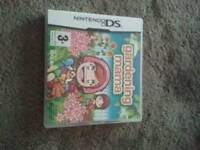 Ds game