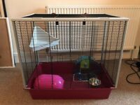 Rat/Rodent Cage