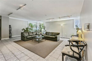 A bright and spacious 2 BR at 616-15 Ave SW for Rent