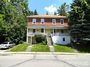Homes for Sale in Paris, Ontario $599,800