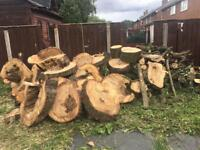 Real wood ideal for log burners was a full tree £150 ovno for the lot