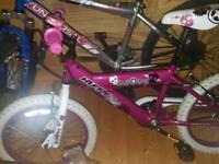 Gils bike