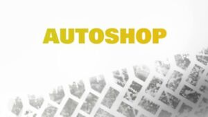 AUTO MECHANICAL - ELECTRICAL- BODY REPAIRS at affordable price!