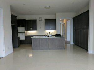 Brand New Greyish Brown Maple kitchen cabinets