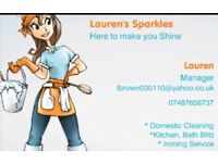 General & Domestic Cleaning
