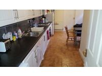 SPECIOUS DOUBLE ROOM TO MOVE IN NOW*FERNDALE RD