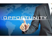 Looking for business partner-Automotive Industry