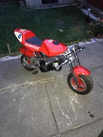 60cc mini Ninja bike
