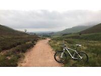 Cube Ltd Pro Hardtail Mountain Bike