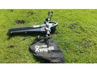Leaf Blower/Vac for sale