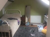 Room to rent in bishopston