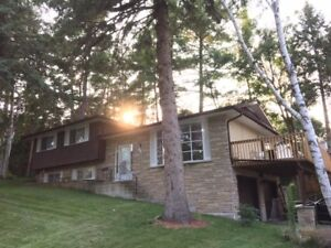 Three Bedroom House - Spacious and Open Concept - Beautiful Lawn