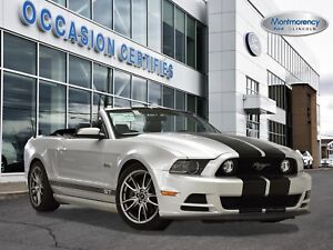 2014 Ford Mustang GT ENSEMBLE PERFORMANCE