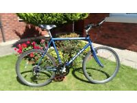 Large Sized Cheap Apollo Mountain Bike.. Simple No Frills Bike in full working order ideal runaround