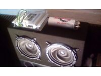 Car sub and amplifier
