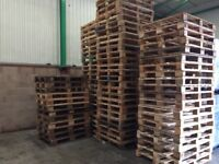 Good condition standard pallets available
